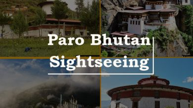 Photo of Why Bhutan Travel Should Be a Must on Everyone's Bucket List