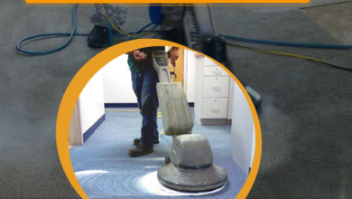 Photo of Benefits of choosing eco friendly carpet cleaning solutions