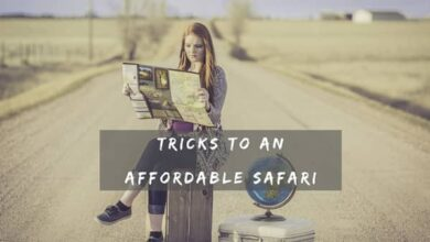 Photo of Tricks to an Affordable Safari