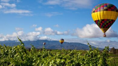 Photo of Best places to visit to appreciate get-aways at Temecula