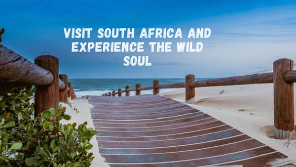 Visit South Africa and Experience the Wild Soul