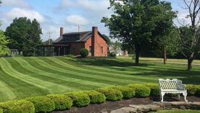 Photo of 6 Essential Landscape Maintenance Tips