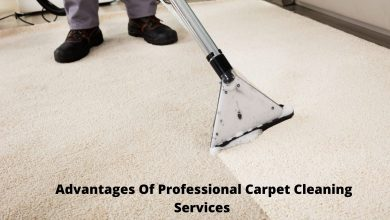 Photo of Advantages Of Professional Carpet Cleaning Service