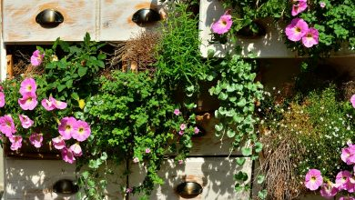 Photo of Balcony garden can be turned to a place of serenity and beauty