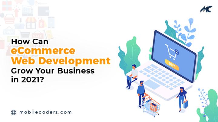 Ecommerce Web App Development