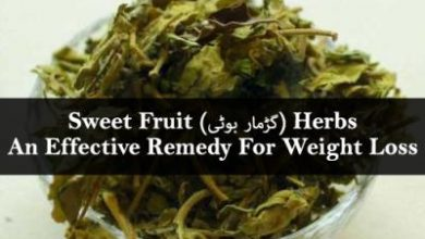 Photo of Sweet Fruit(گڑمار بوٹی) Herbs – An Effective Remedy For Weight Loss