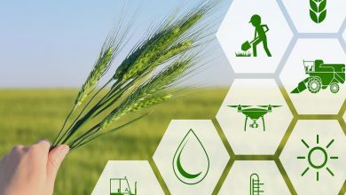 Photo of Future of Digital Farming, Global Digital Agriculture Market and growth potential