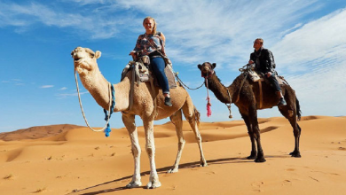 Photo of Camel Trekking – An Experience Of A Lifetime