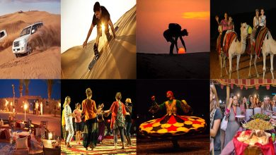 Photo of What to do in Evening Desert Safari Dubai?