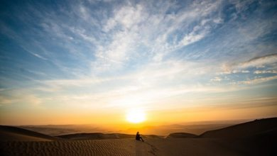Photo of What Type of Activities You Can Do On Your Morning Desert Safari?