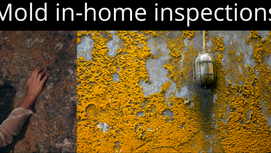 Photo of Mold in-home inspections