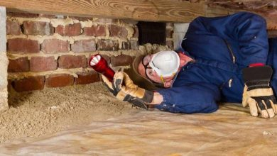 Photo of TOP 8 TERMITE PREVENTION METHODS THAT WILL ACTUALLY HELP PROTECT YOUR HOME