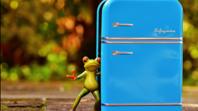 Photo of What Role Does a Refrigerator Play in Your Daily Life?