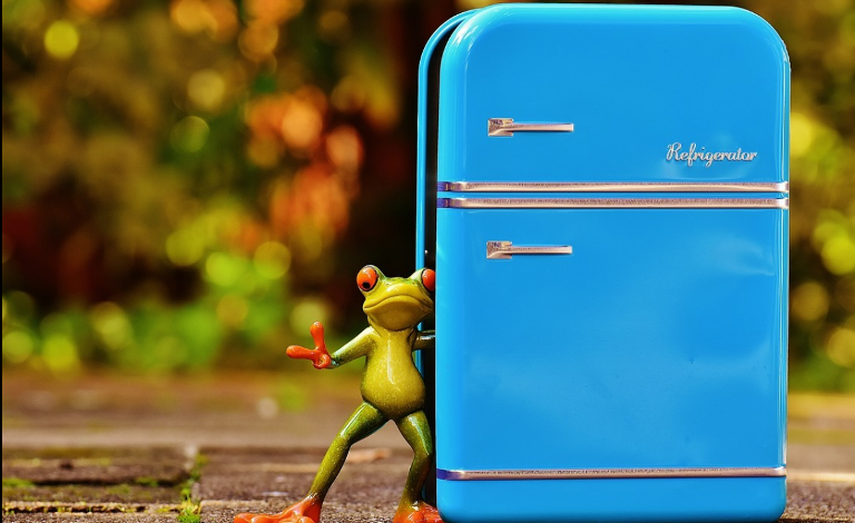 What Role Does a Refrigerator Play in Your Daily Life?