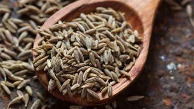 Photo of What is Cumin and how to use it in Cooking?
