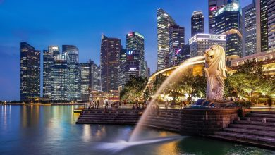 Photo of Things You Should Avoid When Travel To Singapore | Iryna Renkas