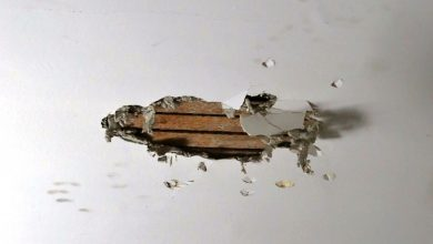 Photo of Is Plaster Wall Repair Task You Can Do Yourself? – Hire Expert One