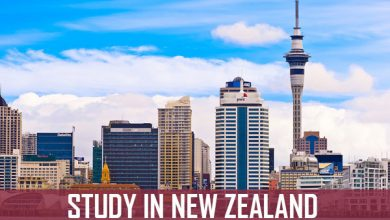 Photo of Alluring Career Opportunities in New Zealand