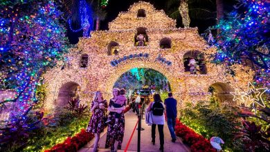 Photo of List Of Best Places To Visit In Los Angeles On The Eve Of Christmas