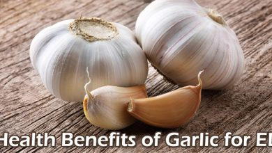 Photo of Health Benefits of Garlic for ED