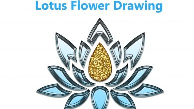 Photo of Lotus Flower Drawing Doesn't Have To Be Hard. Read These Tips