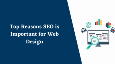 Photo of Top Reasons SEO is Important for Web Design