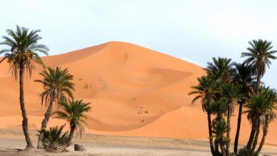 destintions to visit in Morocco