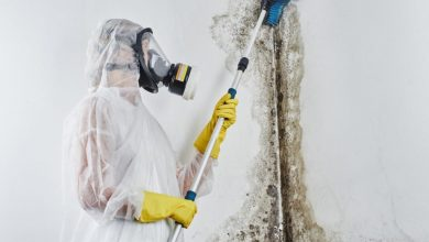 Photo of 4 Tips On How To Deal With Mold Issue