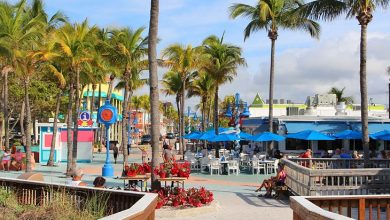 Photo of Best Things to do in Fort Myers