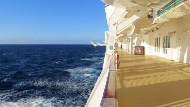 Photo of Parking Offers Best 5 Budget Cruise Lines