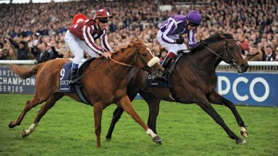 Photo of 5 Biggest Horse Races Globally