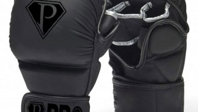 Photo of MMA Leather Gloves