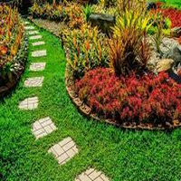 Photo of Maintain your Beautiful yard in no Time