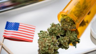 Photo of Palm Bay Patients Discover Medical Marijuana Treatment