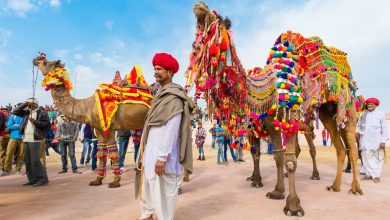 Photo of Culture of Rajasthan – The Most Beautiful Culture of India